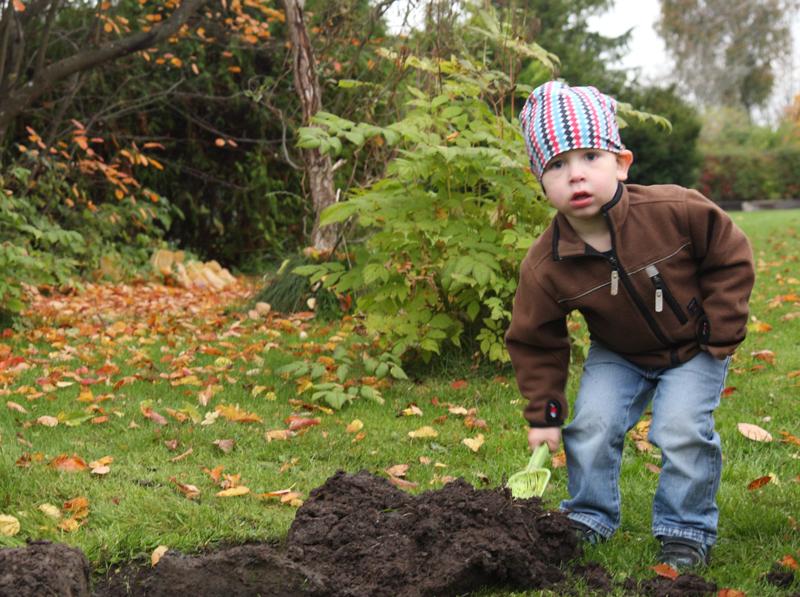2010-10-13_Trädgårdsarbete_0007