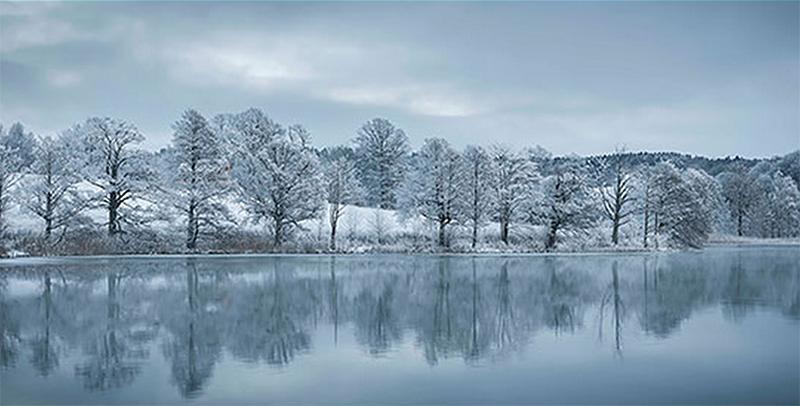 Fototapet - vinter